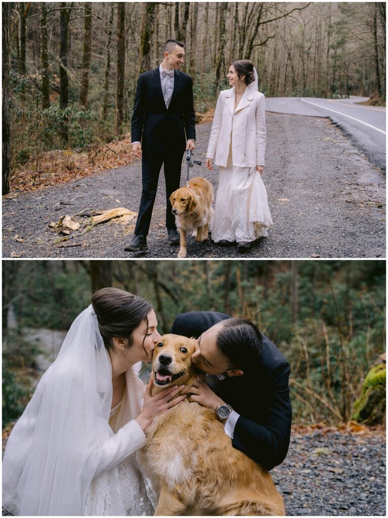 Golden Retriever elopement in Asheville   Legacy & Legend All-Inclusive Elopement